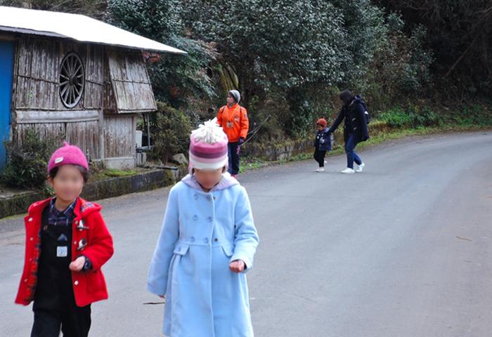 林や田んぼが広がる道を歩きます