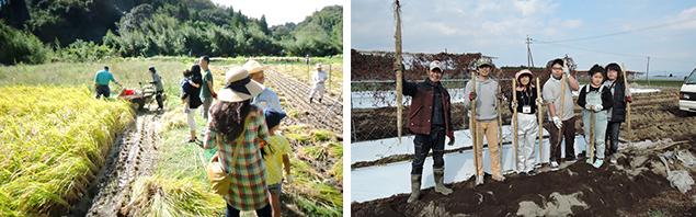 曽於市で就農した方の農園で農業体験!
